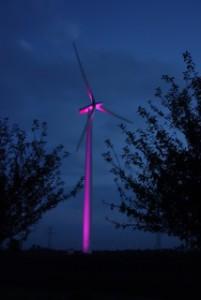 Gisela Meyer-Hahn Windpark im Licht  DSC02521